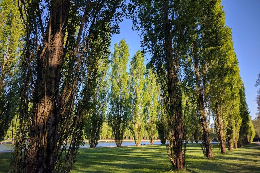 Promenade Sceaux, nature, poussette, enfants