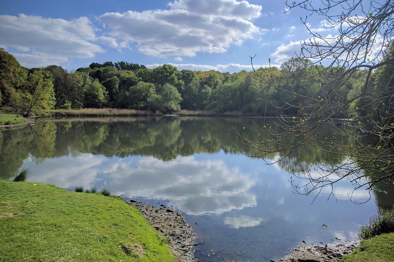 Balade Helloways à Meudon et ses étangs - Île-de-France
