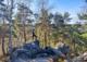 Forêt Chevreuse