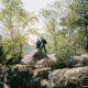 Rochers de Fontainebleau