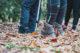Chaussures de randonnée - Guide Helloways